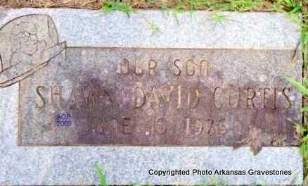 CURTIS, SHAWN DAVID - Scott County, Arkansas | SHAWN DAVID CURTIS - Arkansas Gravestone Photos