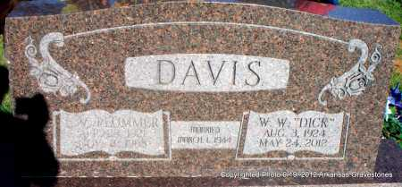 DAVIS, L V - Scott County, Arkansas | L V DAVIS - Arkansas Gravestone Photos