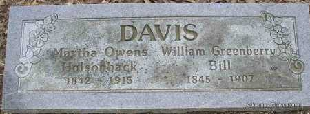 DAVIS, WILLIAM GREENBERRY (BILL) - Scott County, Arkansas | WILLIAM GREENBERRY (BILL) DAVIS - Arkansas Gravestone Photos