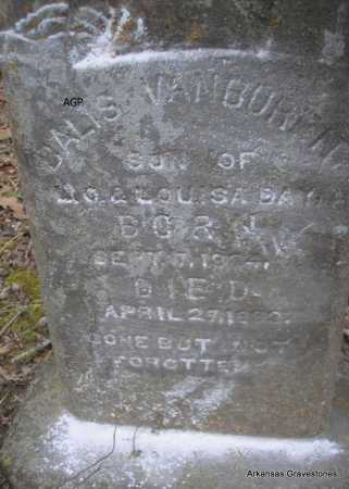 DAY, DALIS VAN BUREN - Scott County, Arkansas | DALIS VAN BUREN DAY - Arkansas Gravestone Photos