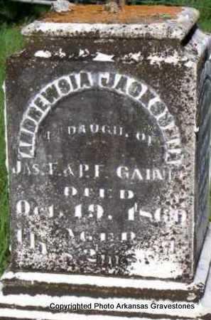 GAINES, ANDREWSIA JACKSONIA - Scott County, Arkansas   ANDREWSIA JACKSONIA GAINES - Arkansas Gravestone Photos