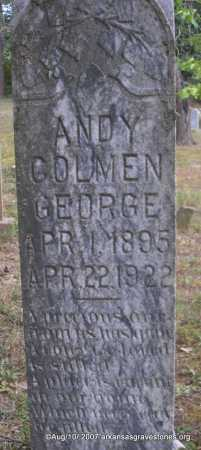 GEORGE, ANDY COLMEN - Scott County, Arkansas | ANDY COLMEN GEORGE - Arkansas Gravestone Photos