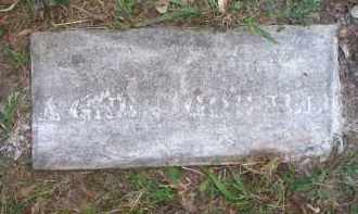 GOSNELL, AGNES - Scott County, Arkansas | AGNES GOSNELL - Arkansas Gravestone Photos