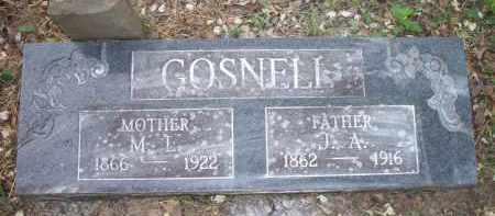 GOSNELL, M  L - Scott County, Arkansas | M  L GOSNELL - Arkansas Gravestone Photos