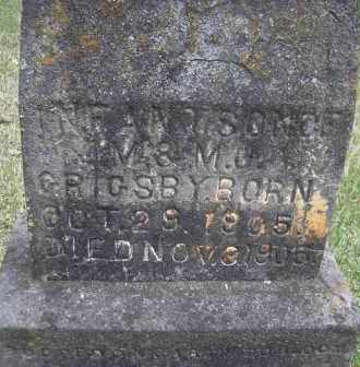 GRIGSBY, INFANT SON - Scott County, Arkansas | INFANT SON GRIGSBY - Arkansas Gravestone Photos