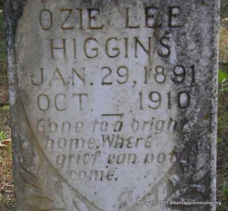 HIGGINS, OZZIE LEE - Scott County, Arkansas | OZZIE LEE HIGGINS - Arkansas Gravestone Photos