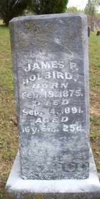HOLBIRD, JAMES P - Scott County, Arkansas | JAMES P HOLBIRD - Arkansas Gravestone Photos