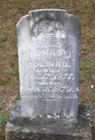 HOLBIRD, THOMAS J - Scott County, Arkansas | THOMAS J HOLBIRD - Arkansas Gravestone Photos