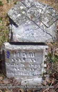 HON, MARTHA - Scott County, Arkansas | MARTHA HON - Arkansas Gravestone Photos