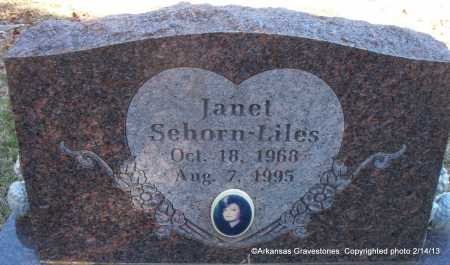 SEHORN LILES, JANET L - Scott County, Arkansas | JANET L SEHORN LILES - Arkansas Gravestone Photos