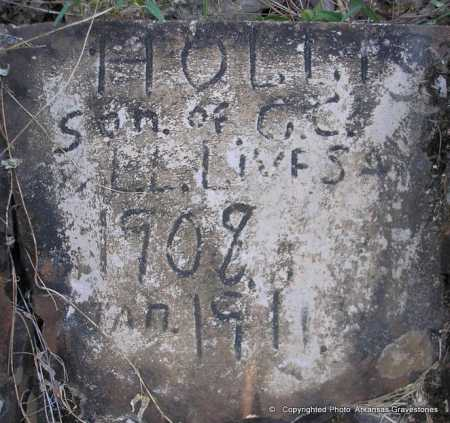 LIVESAY, HOLLIS  ( CLOSEUP) - Scott County, Arkansas | HOLLIS  ( CLOSEUP) LIVESAY - Arkansas Gravestone Photos