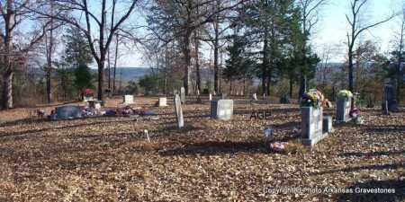 *MONROE CEMTERY OVERVIEW,  - Scott County, Arkansas |  *MONROE CEMTERY OVERVIEW - Arkansas Gravestone Photos