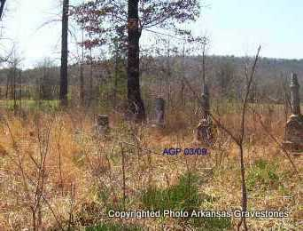 *OLD HON, OVERVIEW - Scott County, Arkansas | OVERVIEW *OLD HON - Arkansas Gravestone Photos