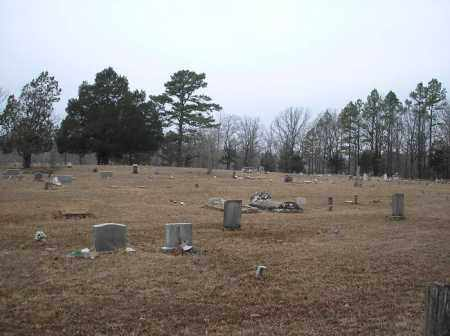 *PINEY CEMETERY OVERVIEW,  - Scott County, Arkansas |  *PINEY CEMETERY OVERVIEW - Arkansas Gravestone Photos