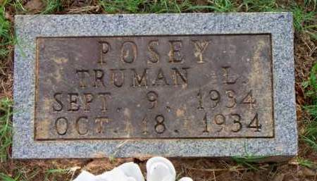 POSEY, TRUMAN L - Scott County, Arkansas | TRUMAN L POSEY - Arkansas Gravestone Photos