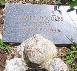 RICHEY, JAMES DOUGLAS - Scott County, Arkansas | JAMES DOUGLAS RICHEY - Arkansas Gravestone Photos