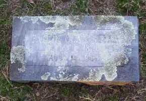 ROGERS, FANNIE OLA - Scott County, Arkansas   FANNIE OLA ROGERS - Arkansas Gravestone Photos