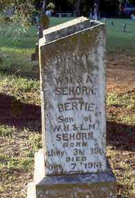 SEHORN, BERTIE - Scott County, Arkansas | BERTIE SEHORN - Arkansas Gravestone Photos