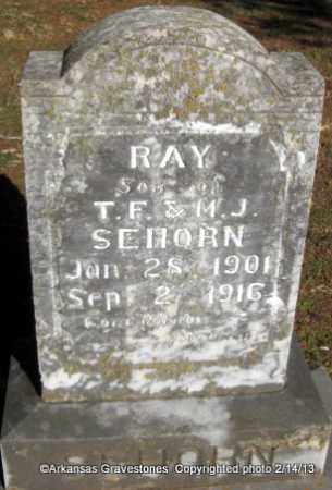 SEHORN, RAY - Scott County, Arkansas | RAY SEHORN - Arkansas Gravestone Photos