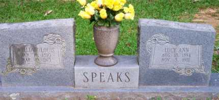 SPEAKS, WILLIAM LOUIS - Scott County, Arkansas | WILLIAM LOUIS SPEAKS - Arkansas Gravestone Photos