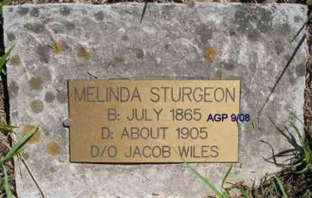 WILES STURGEON, MELINDA - Scott County, Arkansas | MELINDA WILES STURGEON - Arkansas Gravestone Photos