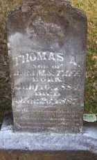TAFF, THOMAS A - Scott County, Arkansas   THOMAS A TAFF - Arkansas Gravestone Photos