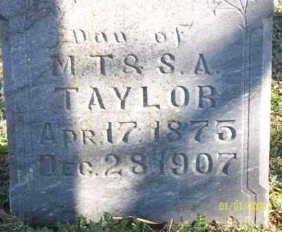 TAYLOR, DELIA P - Scott County, Arkansas | DELIA P TAYLOR - Arkansas Gravestone Photos
