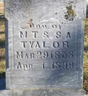 TAYLOR, ELISABETH - Scott County, Arkansas | ELISABETH TAYLOR - Arkansas Gravestone Photos