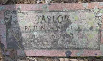 TAYLOR, PAUL LEE - Scott County, Arkansas | PAUL LEE TAYLOR - Arkansas Gravestone Photos