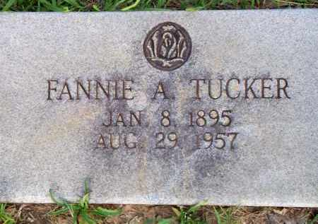 TUCKER, FANNIE A - Scott County, Arkansas | FANNIE A TUCKER - Arkansas Gravestone Photos