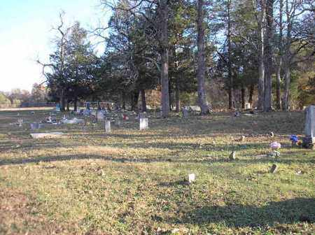 *WALNUT GROVE OVERVIEW,  - Scott County, Arkansas |  *WALNUT GROVE OVERVIEW - Arkansas Gravestone Photos