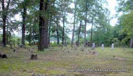 *  OVERVIEW,  - Scott County, Arkansas |  *  OVERVIEW - Arkansas Gravestone Photos