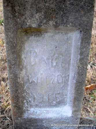 WILSON, BABY - Scott County, Arkansas | BABY WILSON - Arkansas Gravestone Photos