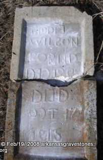WILSON, BIDDIE - Scott County, Arkansas | BIDDIE WILSON - Arkansas Gravestone Photos