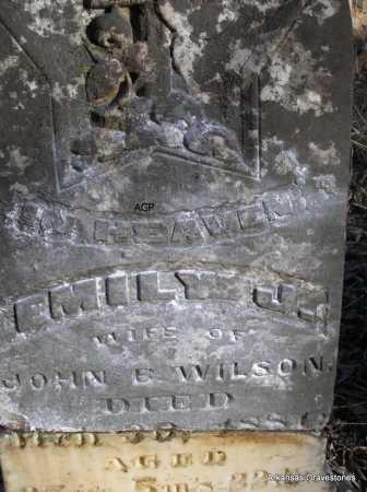 WILSON, EMILY J - Scott County, Arkansas | EMILY J WILSON - Arkansas Gravestone Photos