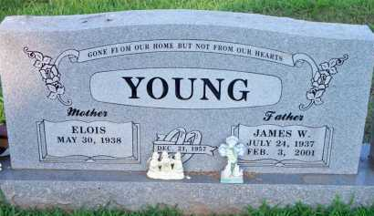 YOUNG, JAMES W - Scott County, Arkansas | JAMES W YOUNG - Arkansas Gravestone Photos