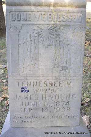 YOUNG, TENNESSEE MISSOURI - Scott County, Arkansas | TENNESSEE MISSOURI YOUNG - Arkansas Gravestone Photos