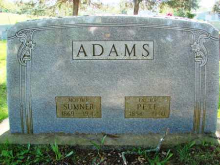 ADAMS, SARAH SUMNER - Searcy County, Arkansas | SARAH SUMNER ADAMS - Arkansas Gravestone Photos