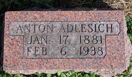ADLESICH, ANTON - Searcy County, Arkansas | ANTON ADLESICH - Arkansas Gravestone Photos