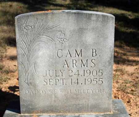 ARMS, CAM B. - Searcy County, Arkansas | CAM B. ARMS - Arkansas Gravestone Photos