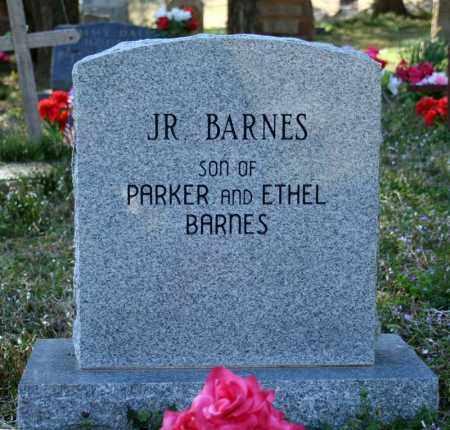 BARNES, JR - Searcy County, Arkansas | JR BARNES - Arkansas Gravestone Photos