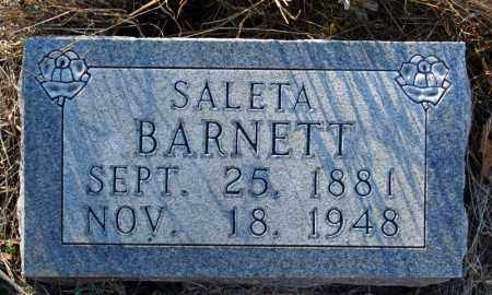 HENDRIX BARNETT, SALETA - Searcy County, Arkansas | SALETA HENDRIX BARNETT - Arkansas Gravestone Photos