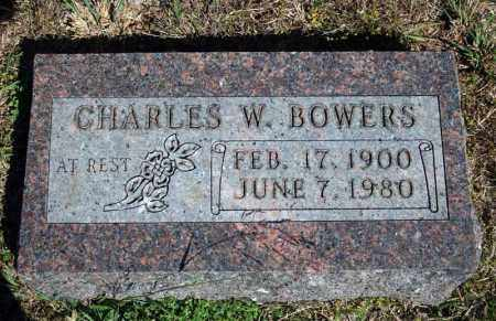 BOWERS, CHARLES W. - Searcy County, Arkansas | CHARLES W. BOWERS - Arkansas Gravestone Photos