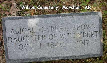 CYPERT BROWN, ABIGAL - Searcy County, Arkansas | ABIGAL CYPERT BROWN - Arkansas Gravestone Photos