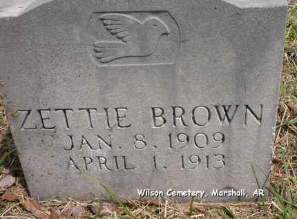 BROWN, ZETTIE - Searcy County, Arkansas | ZETTIE BROWN - Arkansas Gravestone Photos