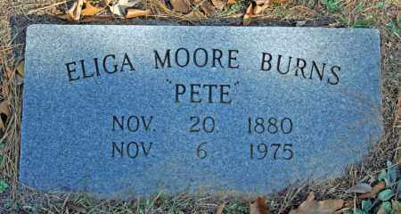 BURNS, ELIGA - Searcy County, Arkansas | ELIGA BURNS - Arkansas Gravestone Photos