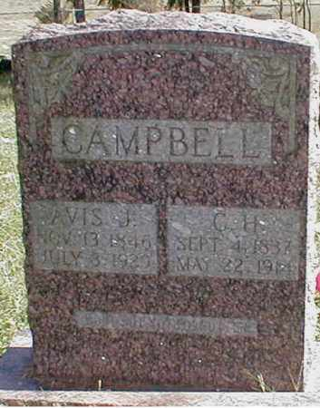 CAMPBELL, AVIS - Searcy County, Arkansas | AVIS CAMPBELL - Arkansas Gravestone Photos