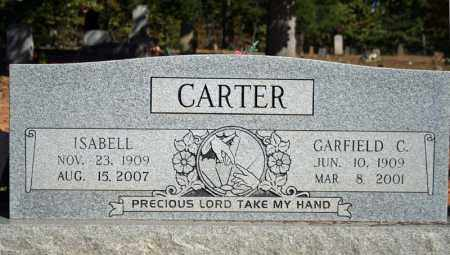 CARTER, GARFIELD C. - Searcy County, Arkansas | GARFIELD C. CARTER - Arkansas Gravestone Photos