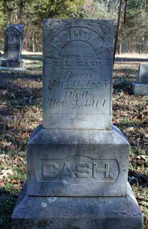 CASH, LEEODAR - Searcy County, Arkansas | LEEODAR CASH - Arkansas Gravestone Photos