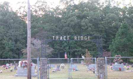 *TRACE RIDGE CEMETERY GATE,  - Searcy County, Arkansas |  *TRACE RIDGE CEMETERY GATE - Arkansas Gravestone Photos
